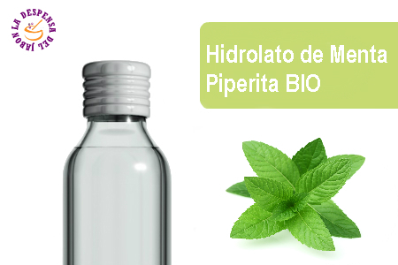 Mint Piperita Hydrolate BIO