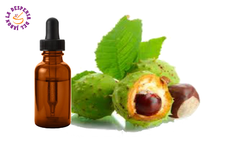 Glycolic Extract of Horse Chestnut