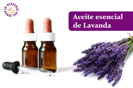 Lavender Essential Oil-DELIVERY FROM 16/9