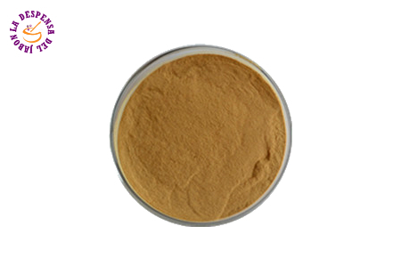 Neem Powder Bio