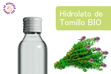 Hydrolate Red Thyme Bio