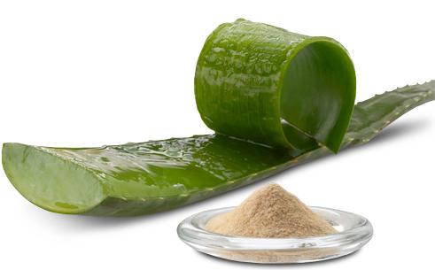 Aloe Vera extracto en polvo - ECOCERT - La Despensa del Jabón