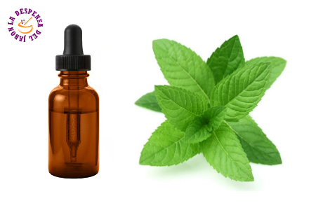 Mint Extract HG